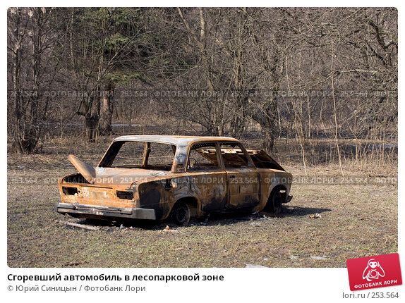 Сгоревший автомобиль в лесопарковой зоне, фото № 253564, снято 30 марта 2008 г. (c) Юрий Синицын / Фотобанк Лори