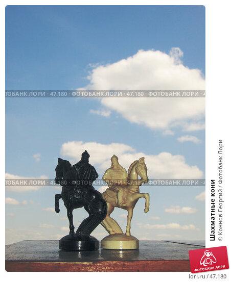 Шахматные кони, фото № 47180, снято 2 августа 2006 г. (c) Коннов Георгий / Фотобанк Лори