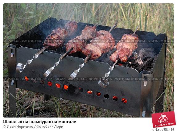 Шашлык на шампурах на мангале, фото № 58416, снято 1 июля 2007 г. (c) Иван Черненко / Фотобанк Лори
