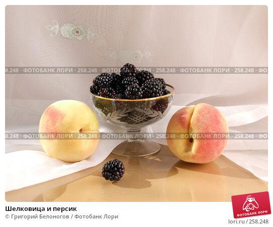 Шелковица и персик, фото № 258248, снято 18 августа 2007 г. (c) Григорий Белоногов / Фотобанк Лори