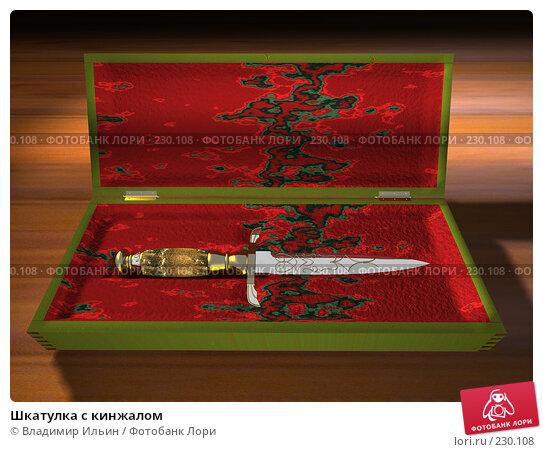 Купить «Шкатулка с кинжалом», иллюстрация № 230108 (c) Владимир Ильин / Фотобанк Лори