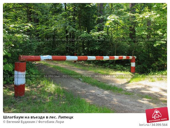 Купить «Шлагбаум на въезде в лес. Липецк.», фото № 34099564, снято 26 июня 2020 г. (c) Евгений Будюкин / Фотобанк Лори