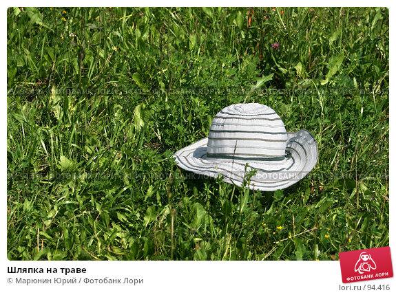Шляпка на траве, фото № 94416, снято 7 июля 2007 г. (c) Марюнин Юрий / Фотобанк Лори