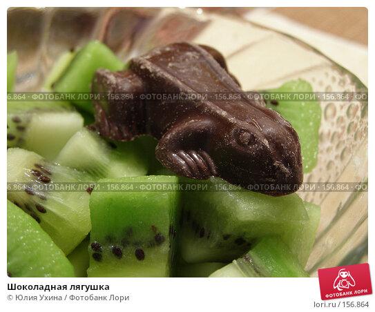 Шоколадная лягушка, эксклюзивное фото № 156864, снято 5 апреля 2005 г. (c) Юлия Ухина / Фотобанк Лори