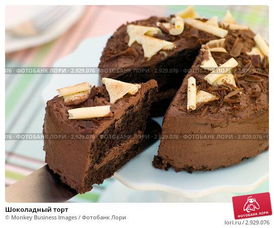 Купить «Шоколадный торт», фото № 2929076, снято 8 августа 2006 г. (c) Monkey Business Images / Фотобанк Лори