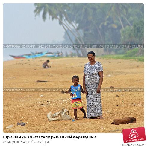 Шри Ланка. Обитатели рыбацкой деревушки., фото № 242808, снято 2 января 2008 г. (c) GrayFox / Фотобанк Лори