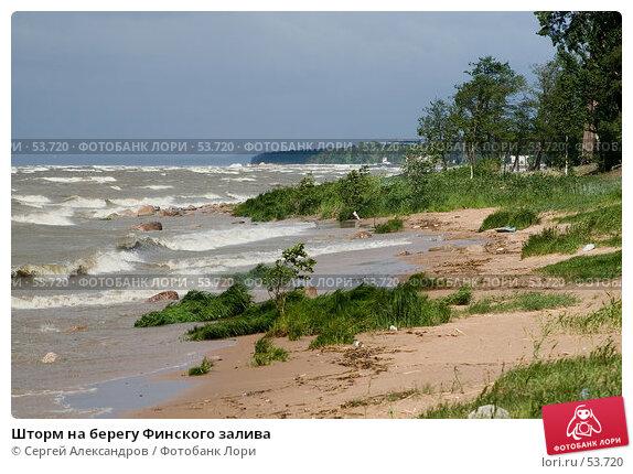Шторм на берегу Финского залива, фото № 53720, снято 15 июня 2007 г. (c) Сергей Александров / Фотобанк Лори
