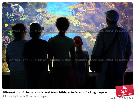 Купить «Silhouettes of three adults and two children in front of a large aquarium with colorful fish», фото № 25840868, снято 24 июля 2014 г. (c) Losevsky Pavel / Фотобанк Лори