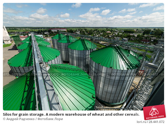 Silos for grain storage. A modern warehouse of wheat and other cereals. Стоковое фото, фотограф Андрей Радченко / Фотобанк Лори