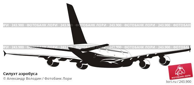 Силуэт аэробуса, иллюстрация № 243900 (c) Александр Володин / Фотобанк Лори