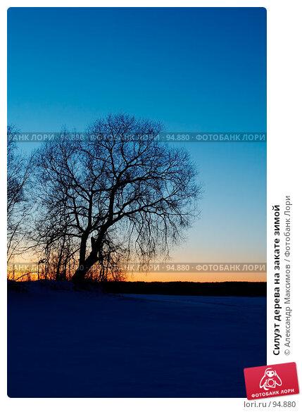 Силуэт дерева на закате зимой, фото № 94880, снято 24 февраля 2007 г. (c) Александр Максимов / Фотобанк Лори
