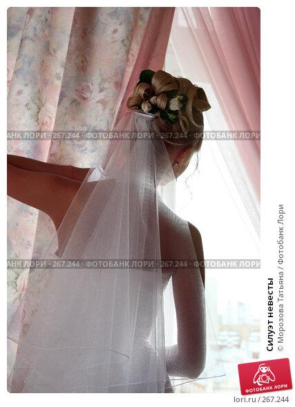 Силуэт невесты, фото № 267244, снято 8 сентября 2007 г. (c) Морозова Татьяна / Фотобанк Лори
