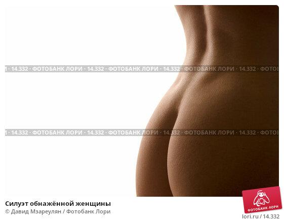 Силуэт обнажённой женщины, фото № 14332, снято 22 декабря 2005 г. (c) Давид Мзареулян / Фотобанк Лори