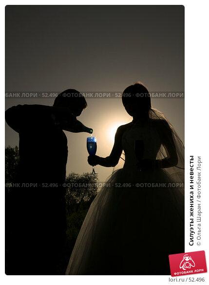 Купить «Силуэты жениха и невесты», фото № 52496, снято 2 июня 2007 г. (c) Ольга Шаран / Фотобанк Лори
