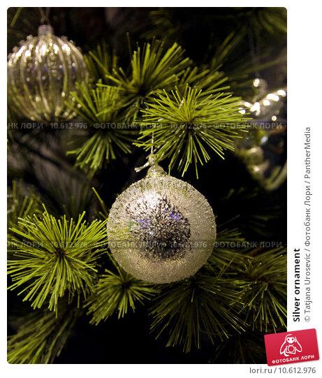 Silver ornament. Стоковое фото, фотограф Tatjana Urosevic / PantherMedia / Фотобанк Лори