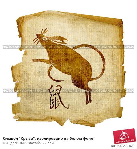 """Купить «Символ """"Крыса"""", изолировано на белом фоне», иллюстрация № 219020 (c) Андрей Зык / Фотобанк Лори"""