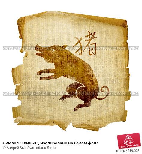 """Символ """"Свинья"""", изолировано на белом фоне, иллюстрация № 219028 (c) Андрей Зык / Фотобанк Лори"""