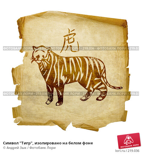 """Символ """"Тигр"""", изолировано на белом фоне, иллюстрация № 219036 (c) Андрей Зык / Фотобанк Лори"""