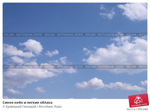 Синее небо и легкие облака, фото № 255044, снято 20 апреля 2004 г. (c) Кравецкий Геннадий / Фотобанк Лори