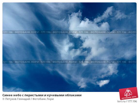 Купить «Синее небо с перистыми и кучевыми облаками», фото № 177196, снято 24 июня 2007 г. (c) Петухов Геннадий / Фотобанк Лори