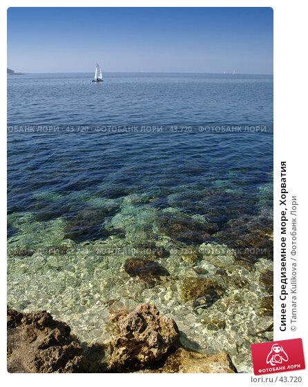 Синее Средиземное море, Хорватия, фото № 43720, снято 9 апреля 2007 г. (c) Tamara Kulikova / Фотобанк Лори