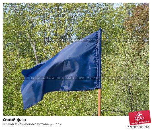 Синий  флаг, фото № 283264, снято 9 мая 2008 г. (c) Яков Филимонов / Фотобанк Лори