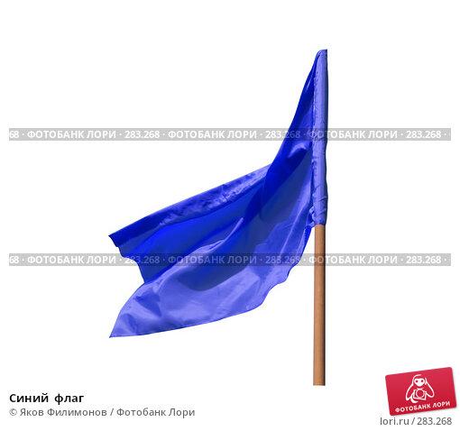 Синий  флаг, фото № 283268, снято 9 мая 2008 г. (c) Яков Филимонов / Фотобанк Лори