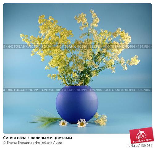 Синяя ваза с полевыми цветами, фото № 139984, снято 22 июня 2007 г. (c) Елена Блохина / Фотобанк Лори
