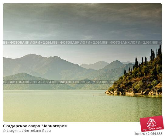 Снять жилье в Скадарское озеро дешево отзывы