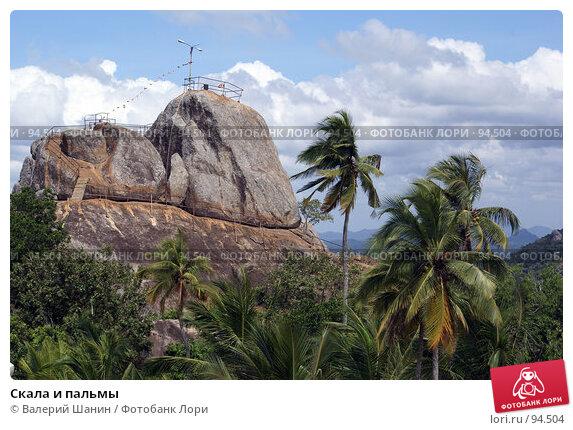 Скала и пальмы, фото № 94504, снято 29 мая 2007 г. (c) Валерий Шанин / Фотобанк Лори