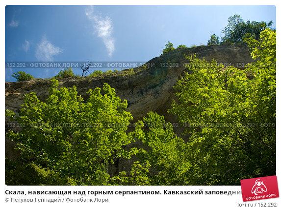 Купить «Скала, нависающая над горным серпантином. Кавказский заповедник», фото № 152292, снято 10 августа 2007 г. (c) Петухов Геннадий / Фотобанк Лори