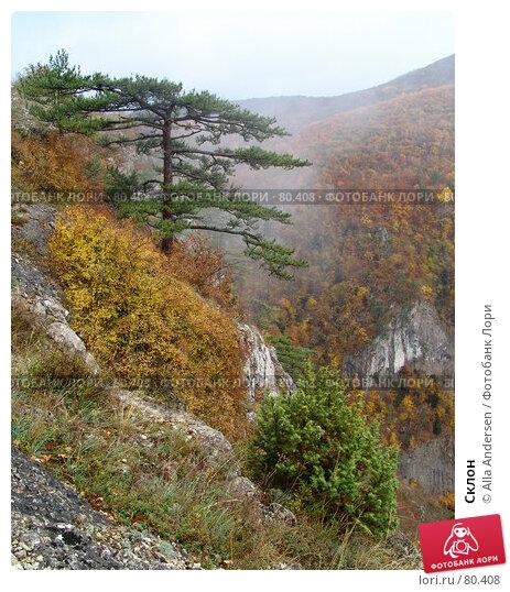 Купить «Склон», фото № 80408, снято 26 октября 2006 г. (c) Alla Andersen / Фотобанк Лори