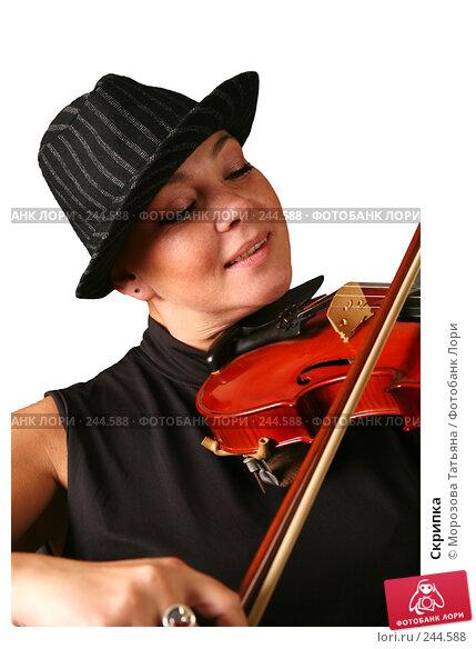 Скрипка, фото № 244588, снято 3 апреля 2008 г. (c) Морозова Татьяна / Фотобанк Лори
