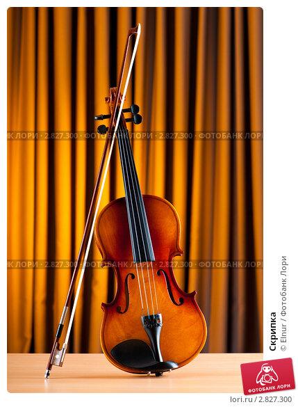 Купить «Скрипка», фото № 2827300, снято 24 июня 2011 г. (c) Elnur / Фотобанк Лори