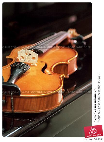 Скрипка на пианино, фото № 36868, снято 26 октября 2016 г. (c) Андрей Соколов / Фотобанк Лори