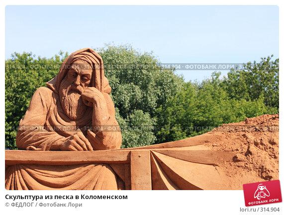 Скульптура из песка в Коломенском, фото № 314904, снято 8 июня 2008 г. (c) ФЕДЛОГ.РФ / Фотобанк Лори