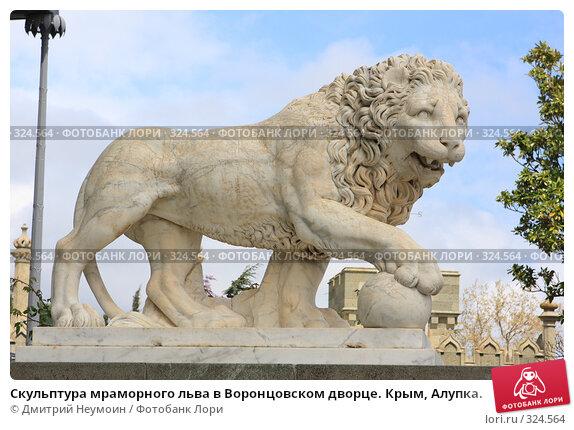 Купить «Скульптура мраморного льва в Воронцовском дворце. Крым, Алупка.», эксклюзивное фото № 324564, снято 29 апреля 2008 г. (c) Дмитрий Неумоин / Фотобанк Лори