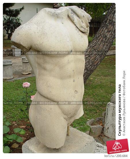Купить «Скульптура мужского тела», фото № 200684, снято 10 мая 2007 г. (c) Анастасия Лукьянова / Фотобанк Лори