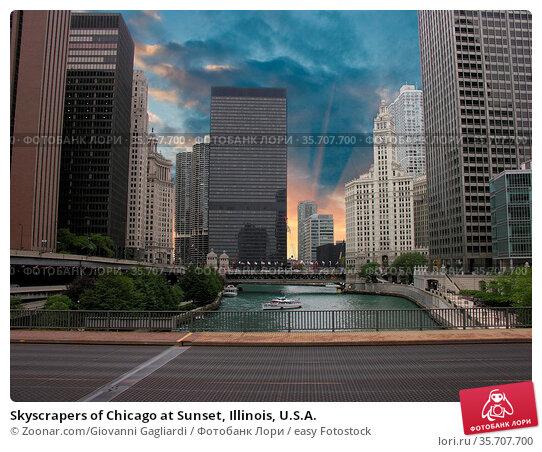 Skyscrapers of Chicago at Sunset, Illinois, U.S.A. Стоковое фото, фотограф Zoonar.com/Giovanni Gagliardi / easy Fotostock / Фотобанк Лори