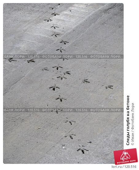 Следы голубя на бетоне, фото № 120516, снято 23 октября 2007 г. (c) Иван / Фотобанк Лори