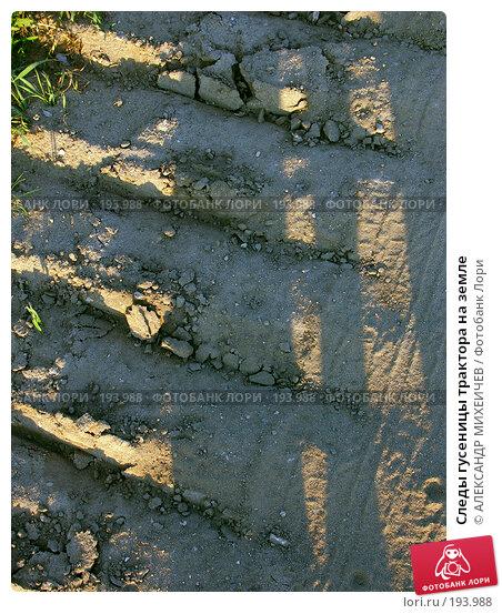 Купить «Следы гусеницы трактора на земле», фото № 193988, снято 20 июня 2006 г. (c) АЛЕКСАНДР МИХЕИЧЕВ / Фотобанк Лори