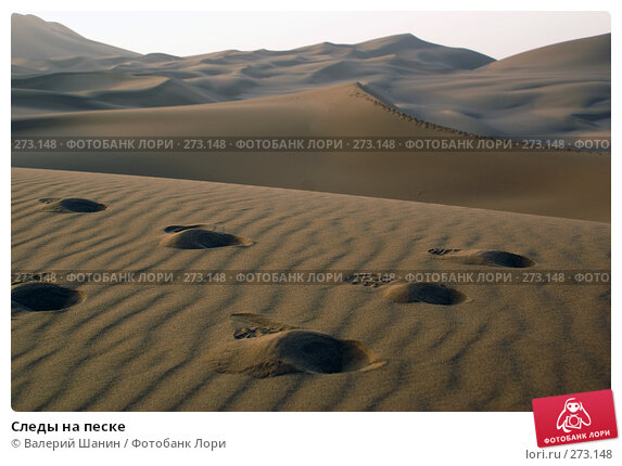 Купить «Следы на песке», фото № 273148, снято 28 ноября 2007 г. (c) Валерий Шанин / Фотобанк Лори