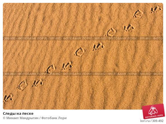 Купить «Следы на песке», фото № 309492, снято 13 мая 2008 г. (c) Михаил Мандрыгин / Фотобанк Лори