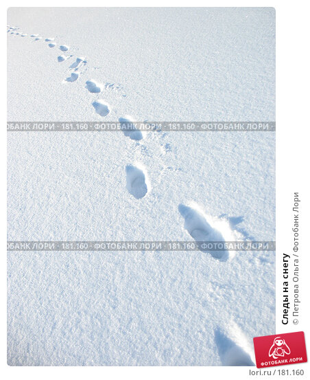 Следы на снегу, фото № 181160, снято 15 декабря 2007 г. (c) Петрова Ольга / Фотобанк Лори