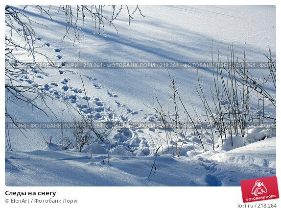Следы на снегу, фото № 218264, снято 25 марта 2017 г. (c) ElenArt / Фотобанк Лори
