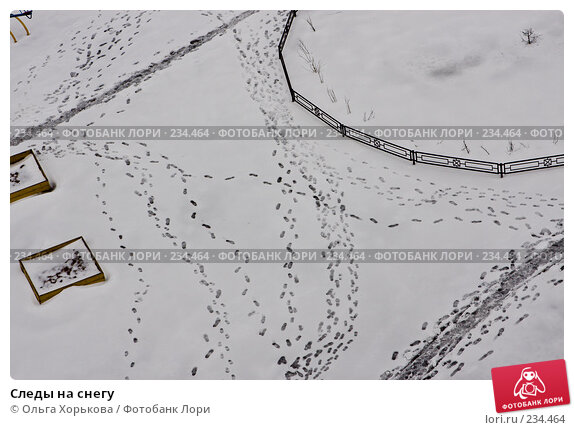 Следы на снегу, фото № 234464, снято 26 марта 2008 г. (c) Ольга Хорькова / Фотобанк Лори