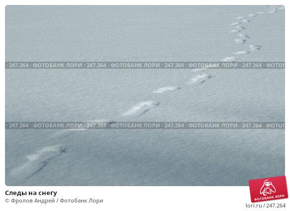 Купить «Следы на снегу», фото № 247264, снято 15 февраля 2008 г. (c) Фролов Андрей / Фотобанк Лори