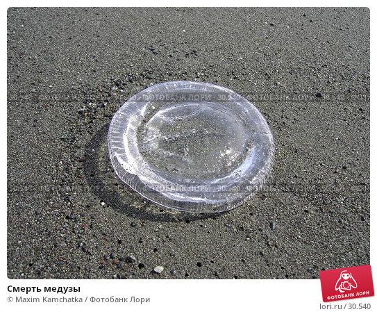Смерть медузы, фото № 30540, снято 7 апреля 2007 г. (c) Maxim Kamchatka / Фотобанк Лори