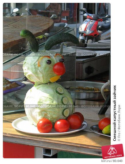 Смешной капустный зайчик, фото № 80040, снято 31 августа 2007 г. (c) Fro / Фотобанк Лори