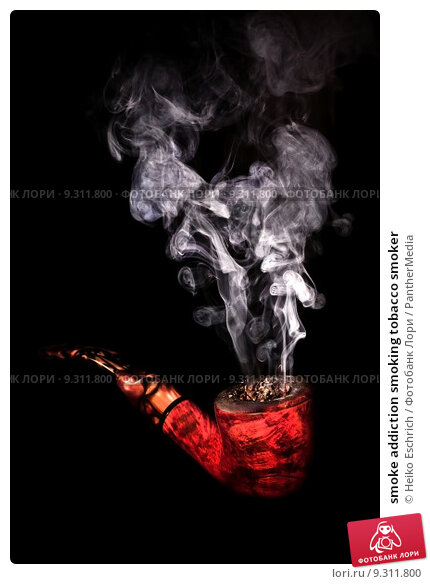 an analysis of the addicted to smoke Analysis of the authority of housing authorities and section 8 multiunit housing owners to adopt smoke-free policies in their residential units susan schoenmarklin, esq.